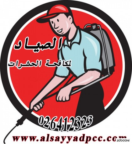 alsyad-lmkafh-alhshrat-fy-abothby-026412323-big-0