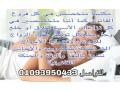 moss-tag-aldyn-llastsharat-alkanony-small-0