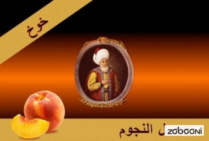 herbal-molasses-elngom-elfakher-from-egypt-00201001468371-big-4